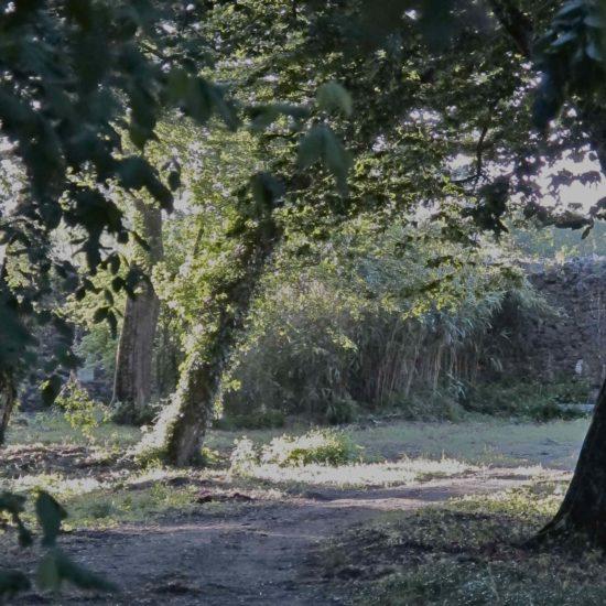 Photos du parc du château de La Baronnière : le parc a été classé Parc pittoresque en 1993