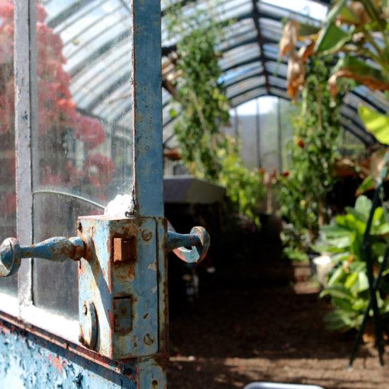 Photos du jardin potager de La Baronnière : la serre XIXème