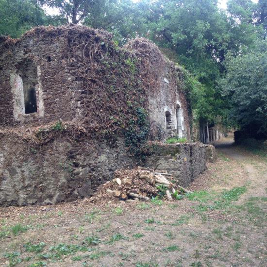 Les ruines du village de Courossé, à La Baronnière