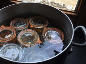 La Baronnière - Conserve de tomates : stérilisez les bocaux