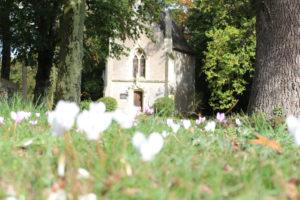 Guerre de Vendée : les cyclamens et la chapelle du château de La Baronnière