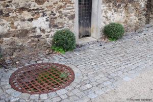 Guerre de Vendée : le puits des bleus dans la cour carrée