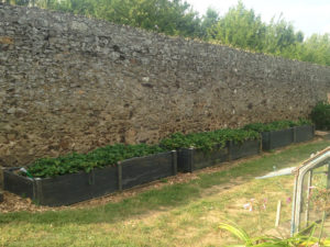 Les trois massifs en ardoise du jardin potager de La Baronnière.
