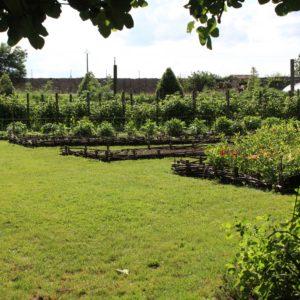 Le jardin potager de La Baronnière : découvrez les lieux remarquables et l'histoire du château de La Baronnière.