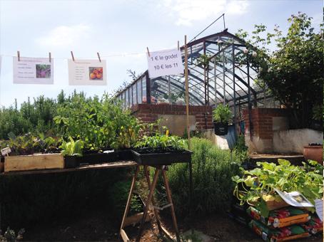 Les petits plants en vente devant la serre du château de La Baronnière