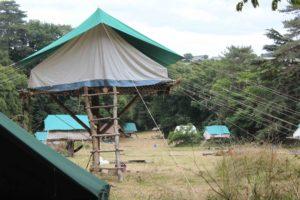 Les séjours : des scouts s'installent chaque été dans un champ du domaine de La Baronnière.