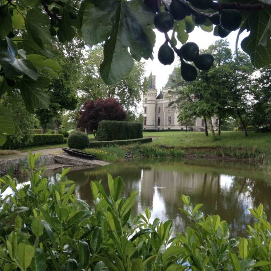 Photos du jardin potager de La Baronnière : le château vu du figuier