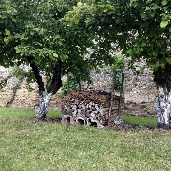 Photos du jardin potager de La Baronnière : l'hôtel des insectes encadré de vieux cognassiers