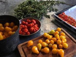 La Baronnière - Tomates séchées : le choix des tomates