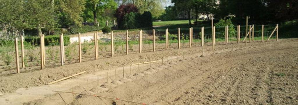 Les piquets pour tracer le dessin du jardin potager en amphithéâtre de La Baronnière