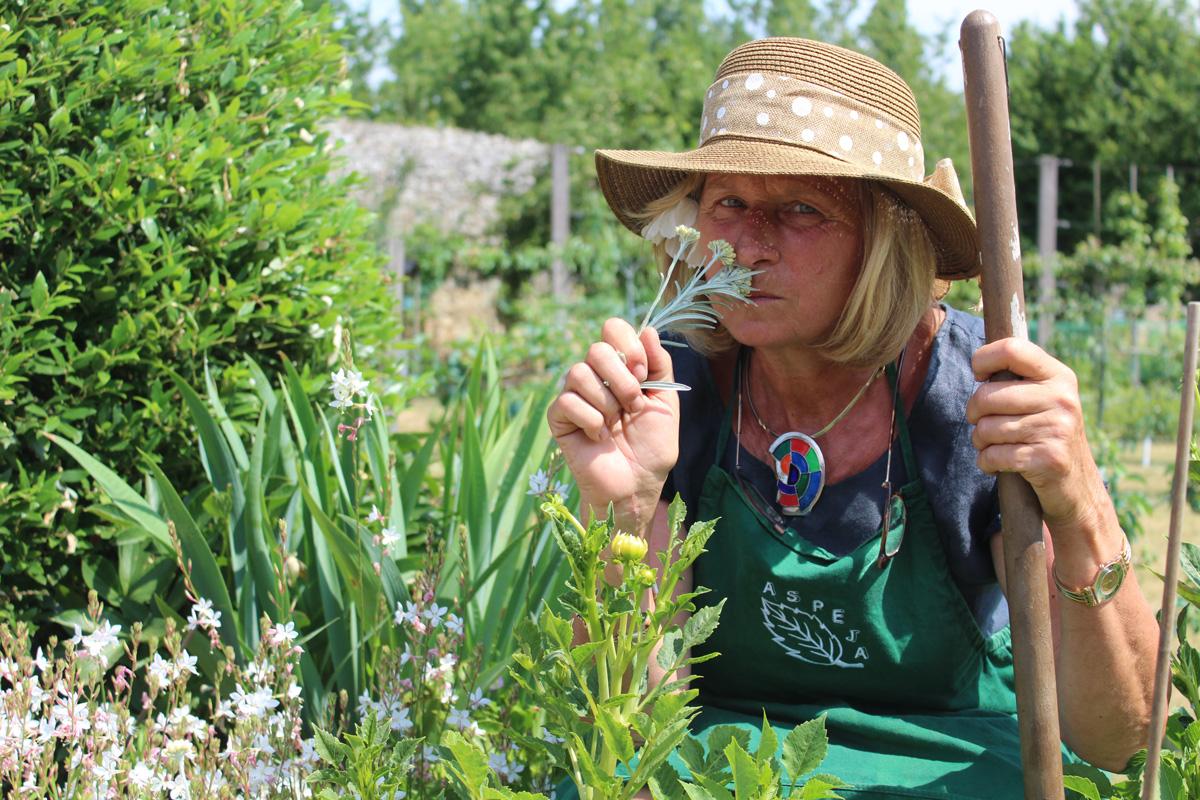 Potager Mobile En Bois la vie dans un jardin potager | château de la baronnière